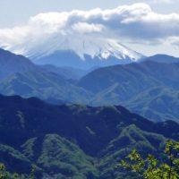 高尾山から望む富士山