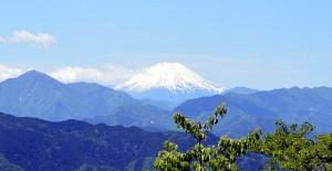 高尾山頂から富士山