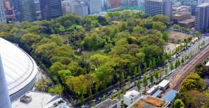 文京シビックセンター展望台から見た小石川後楽園