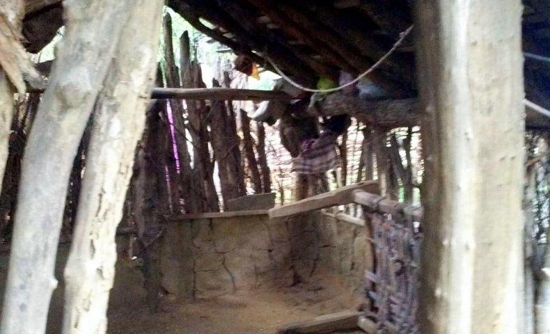GAOKORの小屋