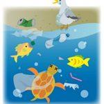 ウミガメと海辺の生物