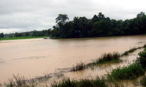 雨季の土地(バングラデシュ)