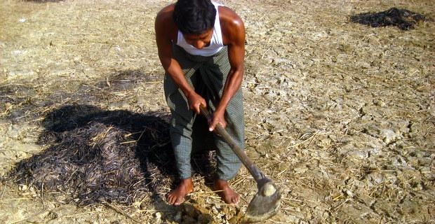 乾季の土地(バングラデシュ)