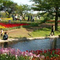 昭和記念公園ウォーカソン 直前チェック