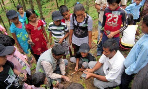 ネパール環境プログラム