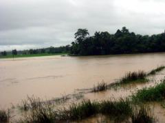 雨季の土地