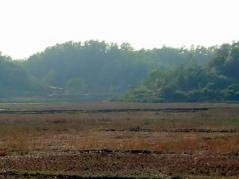 乾季の土地