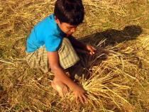 乾季の土地と村の男の子