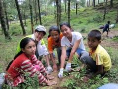 ネパール環境プログラム 植林