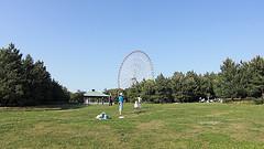 葛西臨海公園 芝生広場と大観覧車