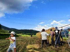 第5回小谷村ワークキャンプ 稲刈り後のハサ掛け
