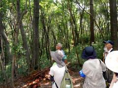 トトロの森 体験談(1)