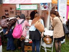 グローバルフェスタ2012 展示ブース(2)