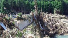 台風12号被害(高田地区)(5)
