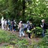 東京ウォーカソン ~狭山丘陵の自然とトトロの森を訪ねて~ 暑かったけど、楽しかったです